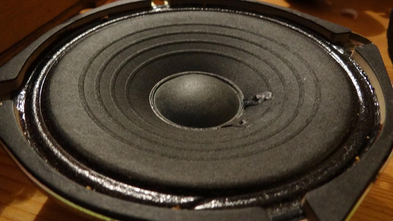 Low frequency range speaker