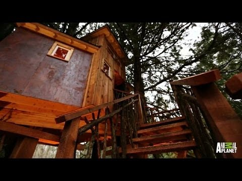 Behind the Build: Record-High Recording Studio | Treehouse Masters – YouTube