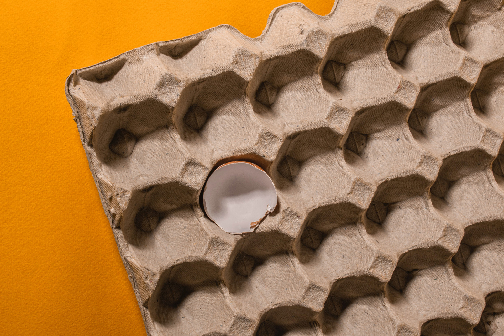 Soundproofing With Egg Cartons
